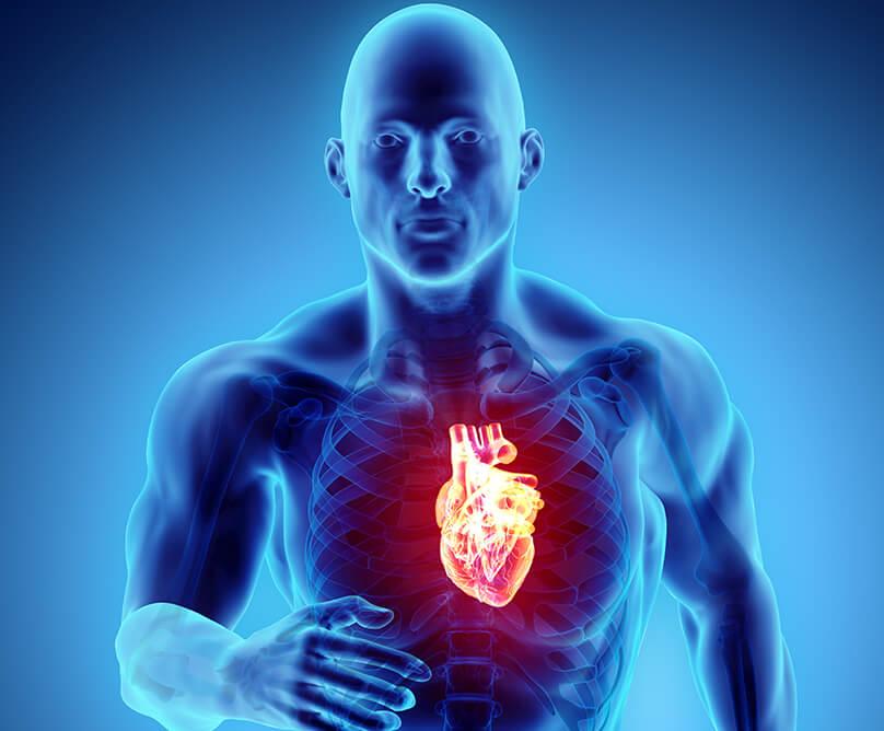 Αιφνίδιος καρδιακός θάνατος σε αθλητές: Αίτια και τρόποι πρόληψης