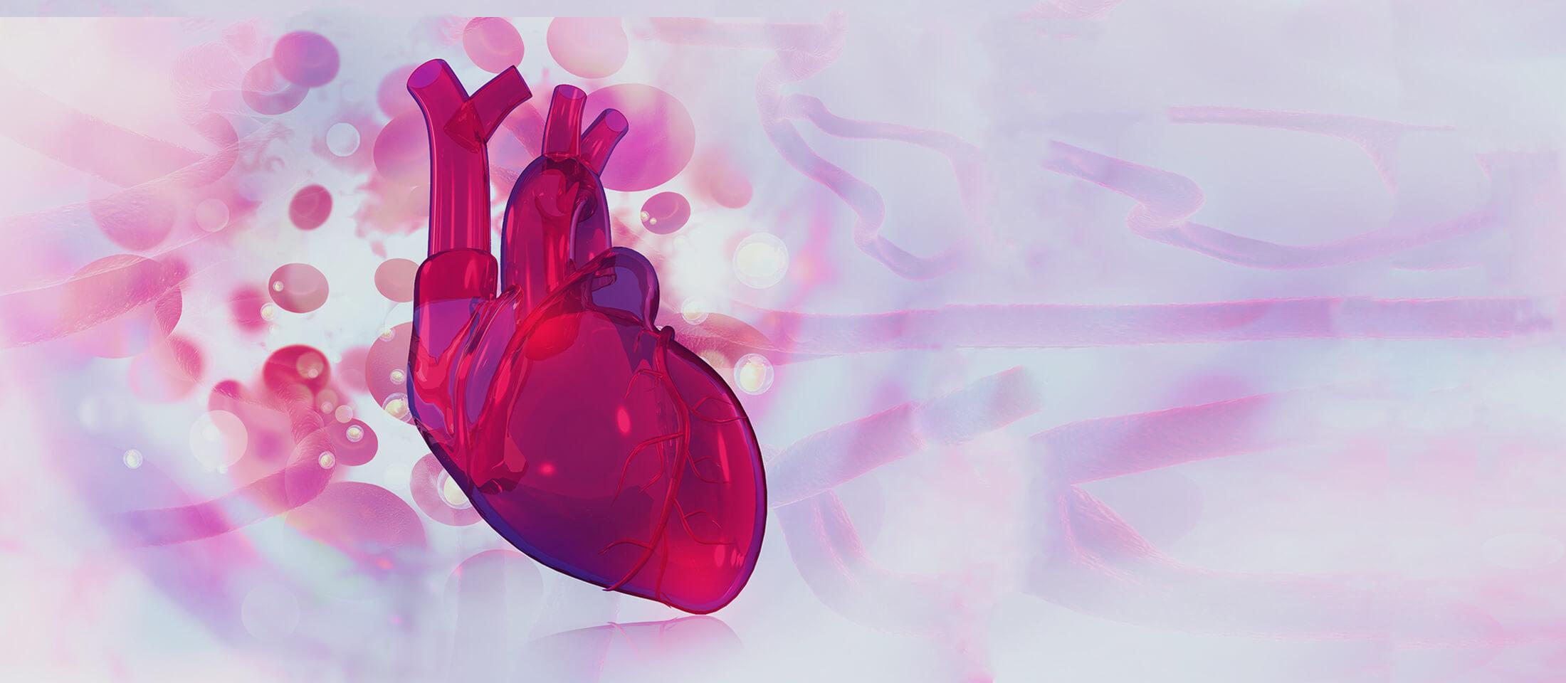 valvida-aortis_slider-2